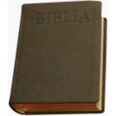 Középméretű új fordítású aranymetszéses Biblia