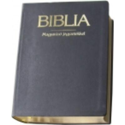 Magyarázatos arany, bőr Biblia
