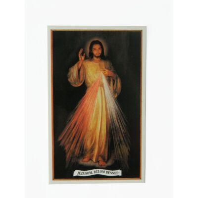 Irgalmas Jézus kép 8x13cm.
